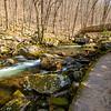 25  G Cascade Falls Trail Views