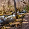 16  G Cascade Falls Trail Views