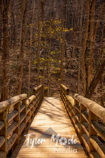 3  G Cascade Falls Trail Views Bridge V