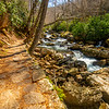 31  G Cascade Falls Trail Views