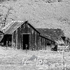 3  G Old Shed BW