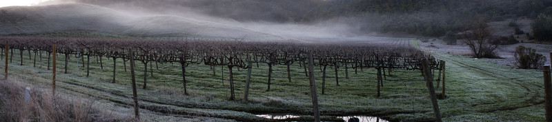 vin fog 6950-6953 cr