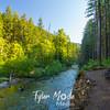 33  G Trail and Siouxon Creek