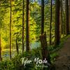 8  G Trail and Siouxon Creek