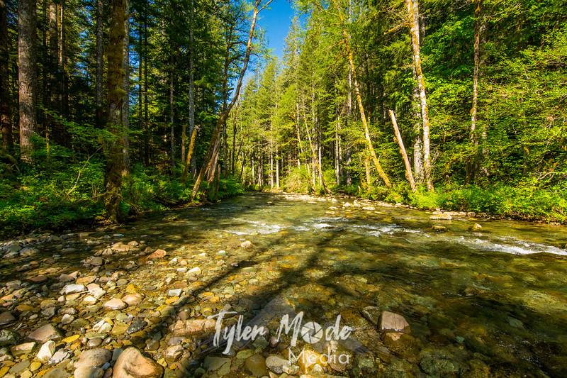 62  G Siouxon Creek