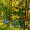 23  G Siouxon Creek