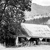 5  G Barn and Tree Close BW