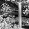 18  G South Falls and Trees BW