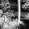 21  G South Falls and Trees BW V
