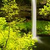 20  G South Falls and Trees V