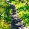 16  G Trail V