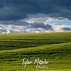 15  G Palouse Views