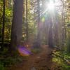 24  G Trail Up Sun V