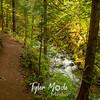 20  G Falls Creek and Trail