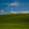 21  G Wheat Fields