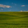 22  G Wheat Fields