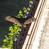 26  G Vulture on Bridge