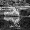 24  G June Lake Reflections BW