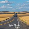 23  G Road Through Wheat