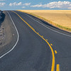 55  G Road Through Wheat V