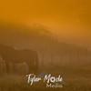 29  G Horse Sunrise