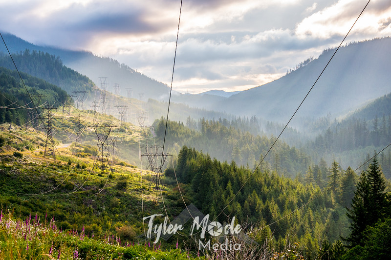 1  G Powerlines and Sun