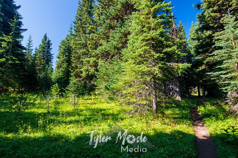 2  G Trail West