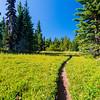 4  G Trail V