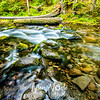 10  G Cold Spring Creek