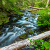 7  G Cold Spring Creek