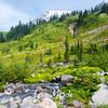 273  G Marmot Creek and Rainier