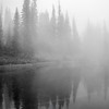 41  G Foggy Tarn BW V