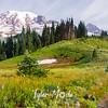 170  G Trail and Rainier