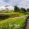 154  G Misty Tatoosh Range Trail