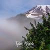 225  G Rainier and Fog Bow