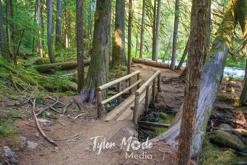 1  G Trail Footbridge