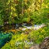 16  G Blue Pool Creek