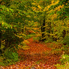 15  G Old Fall Road V