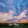 5  G Corn Field Sunrise Wide