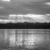 17  G Vancouver Lake Rays BW