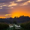 4  G Corn Field Sunrise