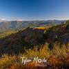 26  G Views North