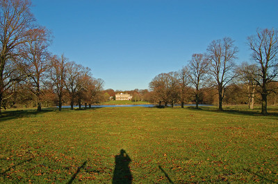 Looking down the avenue of trees to Riseholme Hall, with a self portrait shadow for good measure