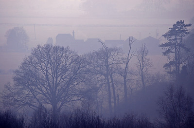 Farm and trees in the mist on the edge of town