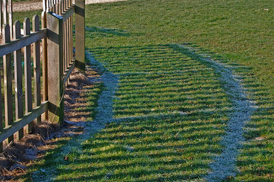 Shadows and frost. The fence on the edge of my local nature reserve shields the frost from the warmth of the sun, creating patterns in the grass