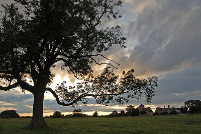 South Greetwell church and the old hall, from the lone tree in the field