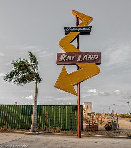 ARUBA 2014--28.jpg