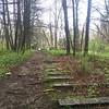 Steps on back path