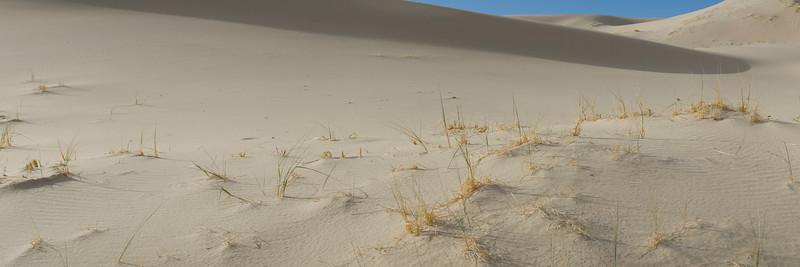 4) Fine Grain 201105020956