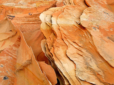 abs24: Sandstone fins in the South Coyote Buttes, Vermilion Cliffs National Monument, by Phyllis